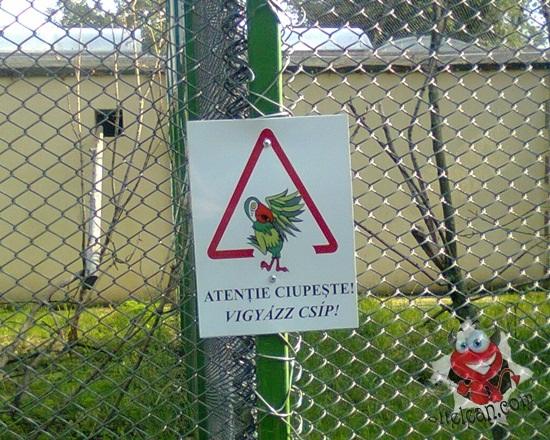 zoo oradea semn