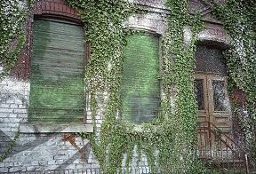 fara ferestre