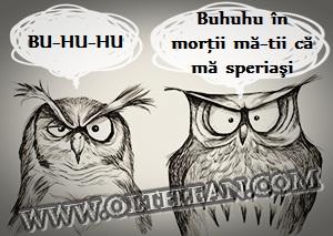 bufnite-buhuhu
