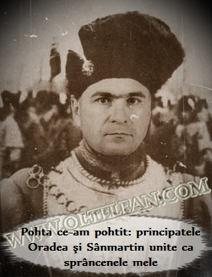 Ilie_Bolojan_Mihai_Viteazul_Referendum_Oradea