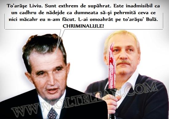 banc_dragnea_legea_defaimarii
