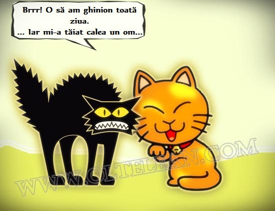 banc_ghinion