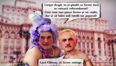 Banc - Dragnea-Tariceanu - referendum